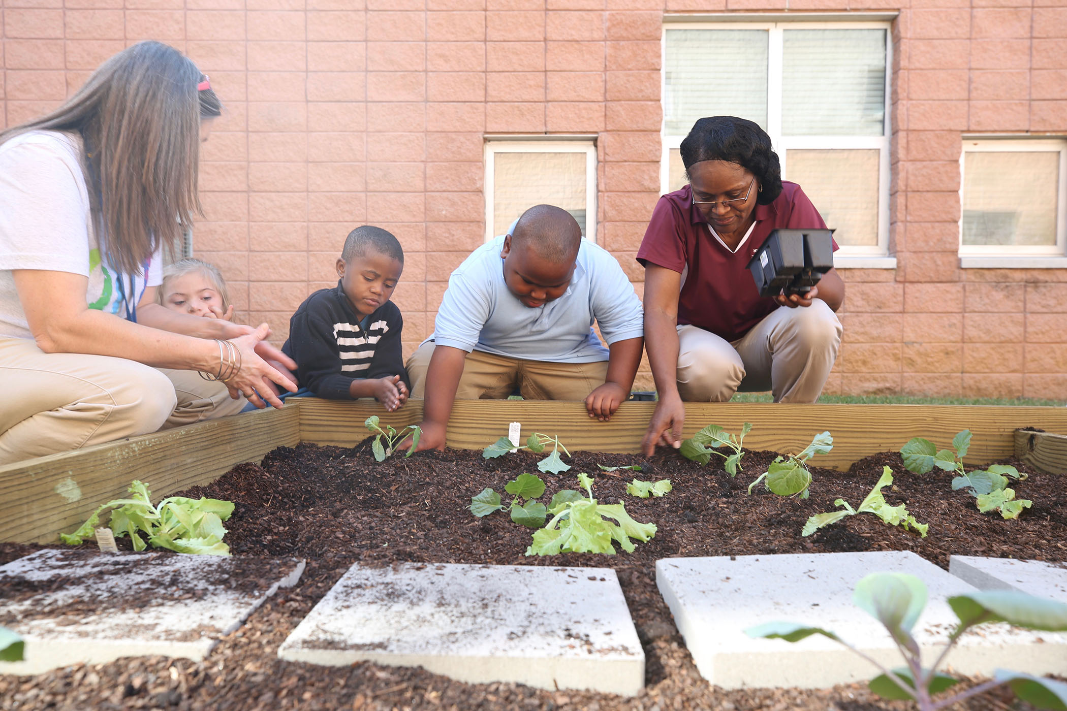 QLE students begin planting vegetables in their garden.