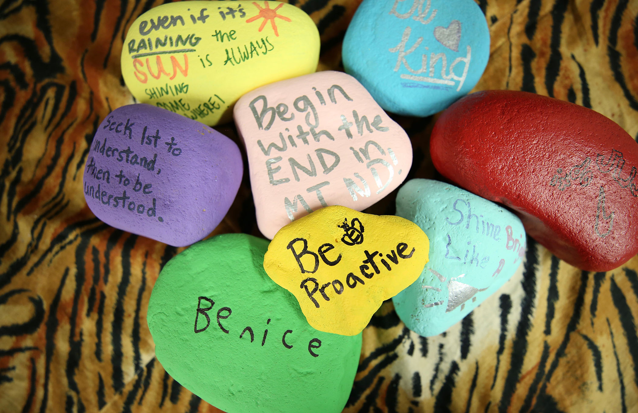 Kindness rocks stacked with the first of the seven habits of highly effective people on top.