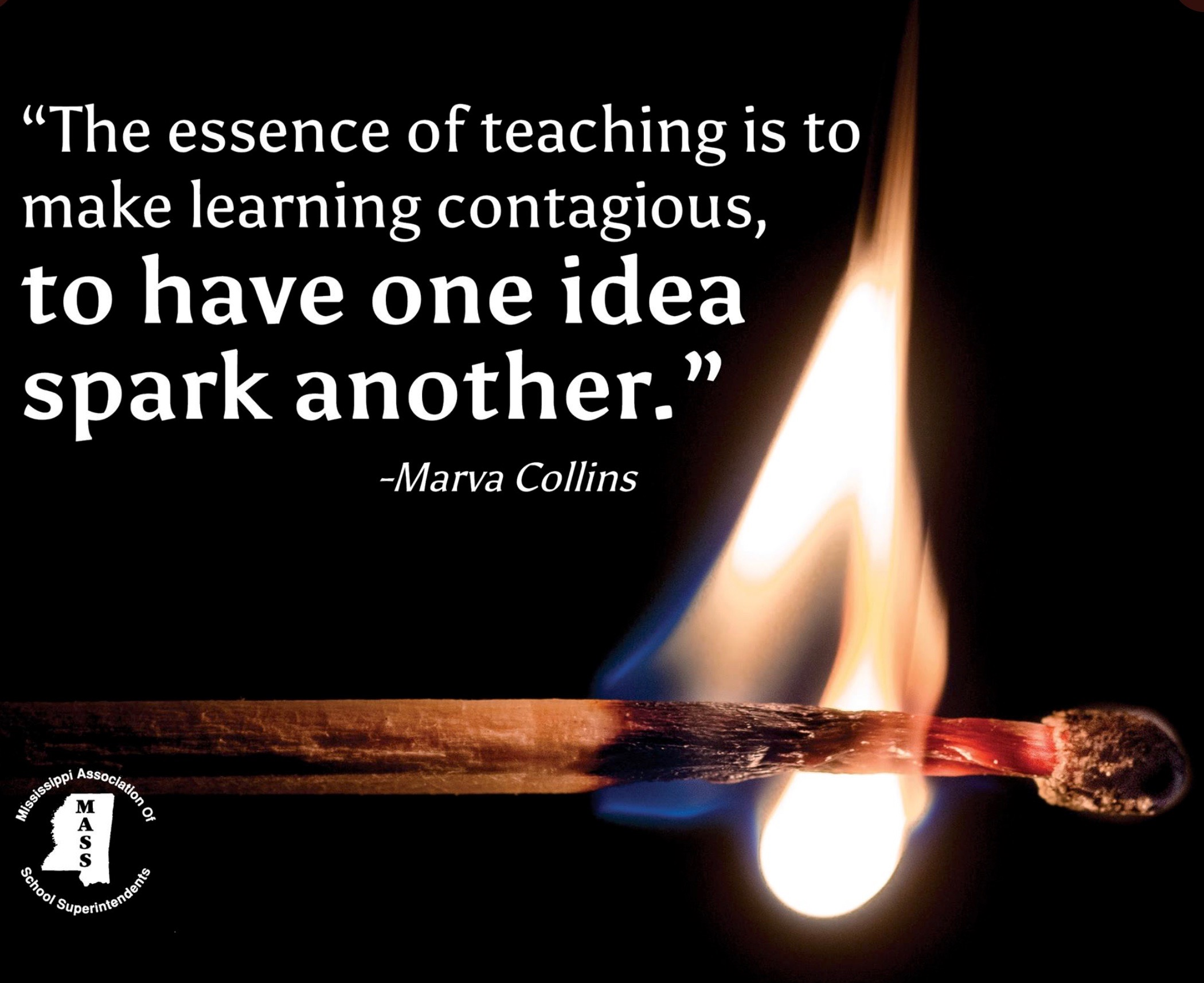 "This is a screenshot with the quote ""The essence of teaching is to have one idea spark another."""